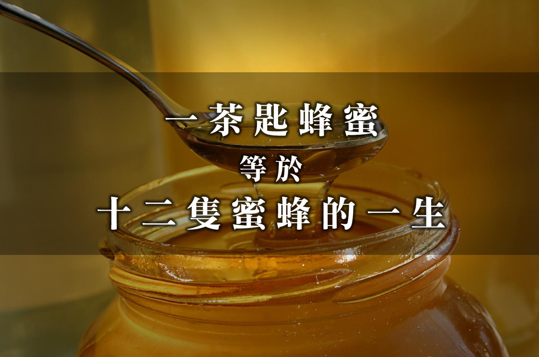 honey copy
