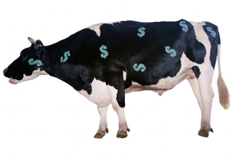 money_cow