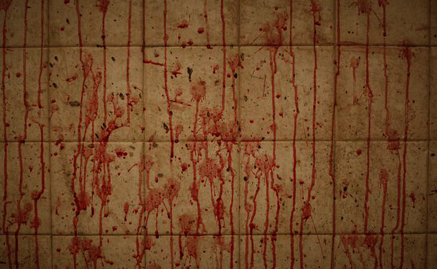 pakistan-slaughterhouse-2009-9-1-6-10-37