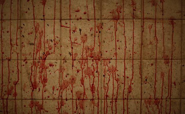 pakistan-slaughterhouse-2009-9-1-6-10-37
