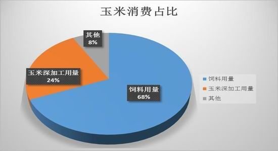 china corn use feed