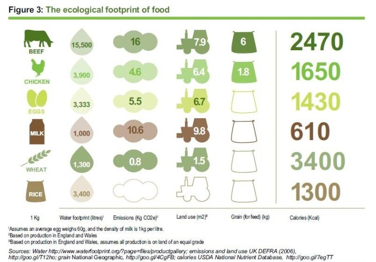 Ecological-footprint-of-food3