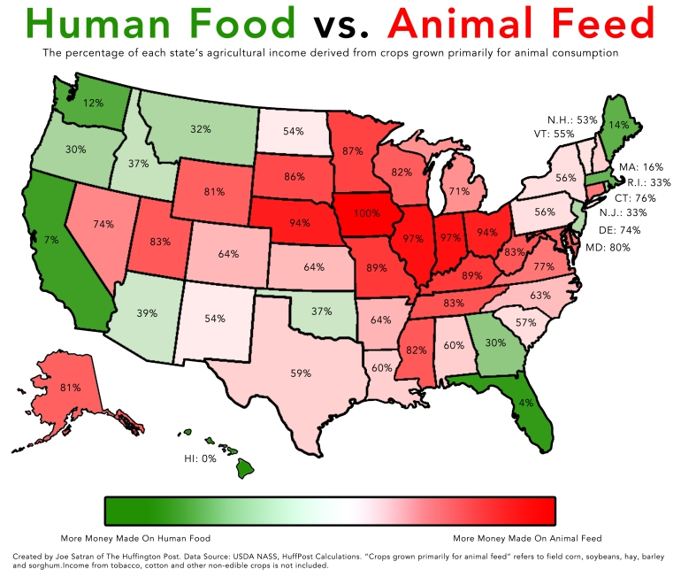 human food animal feed